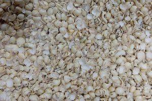Soybean husk